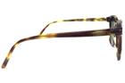 Barberini BR1703/S 03 49 Güneş Gözlüğü resmi