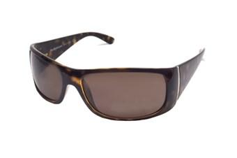 Polo Ralph Lauren PHG0PH4021 505773 62 Güneş Gözlüğü resmi
