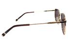 Infiniti INF65 C06 Güneş Gözlüğü resmi