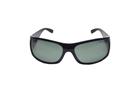 Polo Ralph Lauren PHG0PH4021 50019A 62 Güneş Gözlüğü resmi