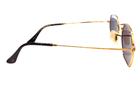 Polo Trend PT17004 C5 Güneş Gözlüğü resmi