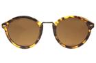 Polo Trend PT8051 C3 Güneş Gözlüğü resmi