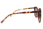 Polo Trend PT8053 C2 Güneş Gözlüğü resmi
